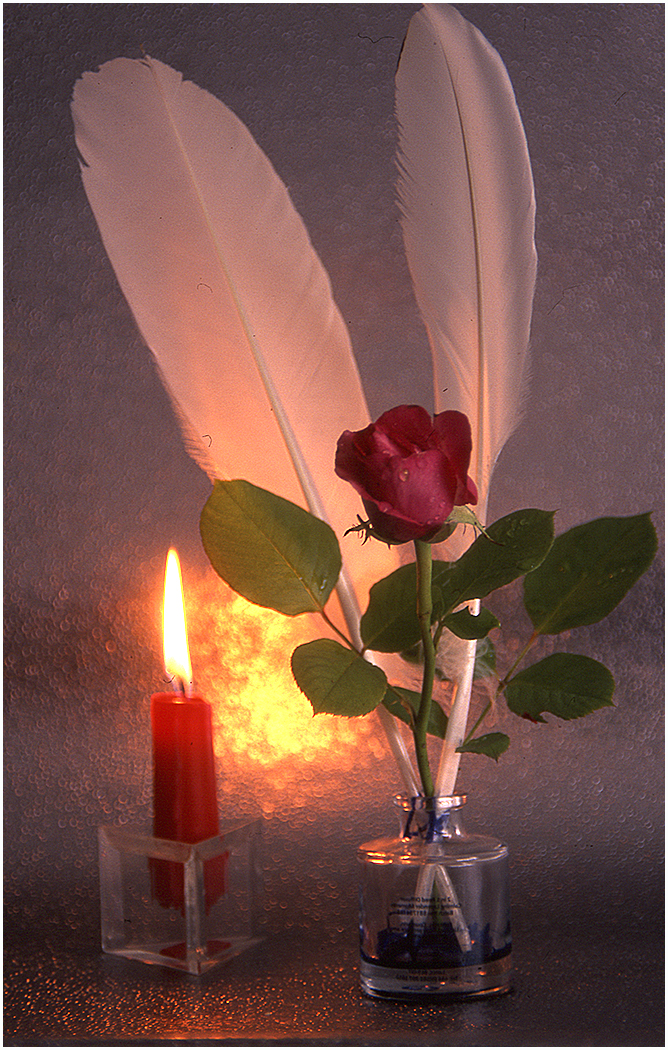 Candle Rose and Feathers