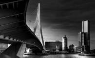 Erasmus bridge and skyline