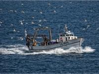 Fishing Boat Sicily 23